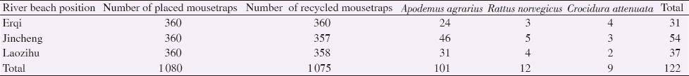 Table 1: Distribution of rodents and insectivores in the Yangtze River beaches (<i>n</i>).